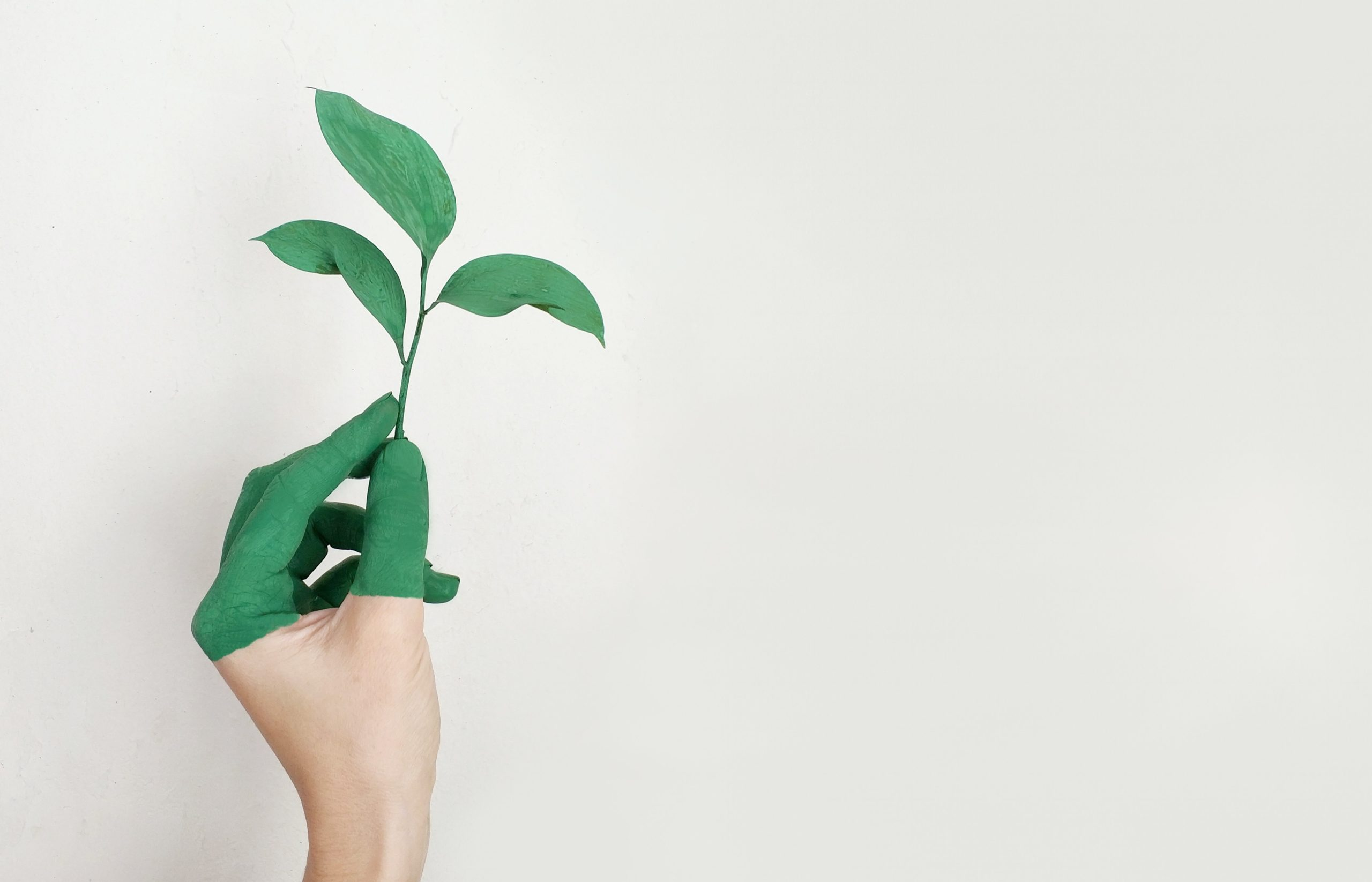 businesses going green